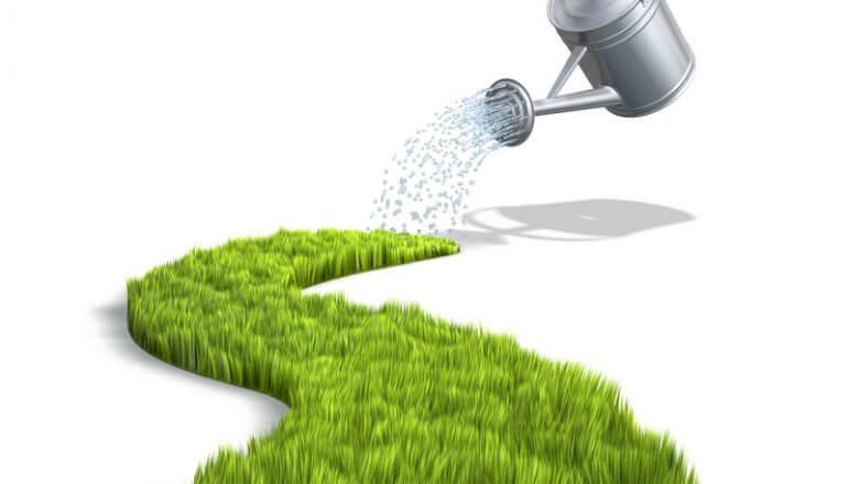 shutterstock 21893260 770x440 - Wässern: wie gieße ich Gartenpflanzen richtig? Teil 2